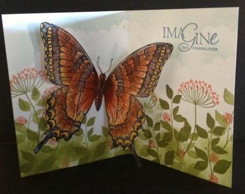 butterfly-inside-jpg