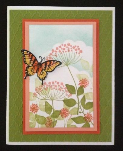 butterfly-jpg