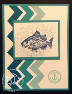 Chevron fish