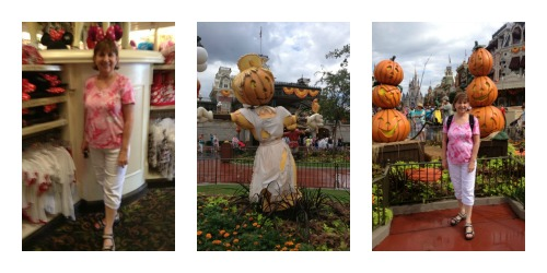 Magic Kingdom Collage