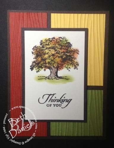 tree colorblock