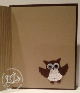 owl open